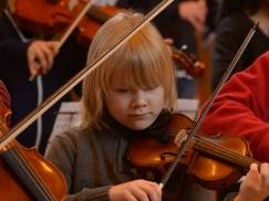 Appeal for lost violin